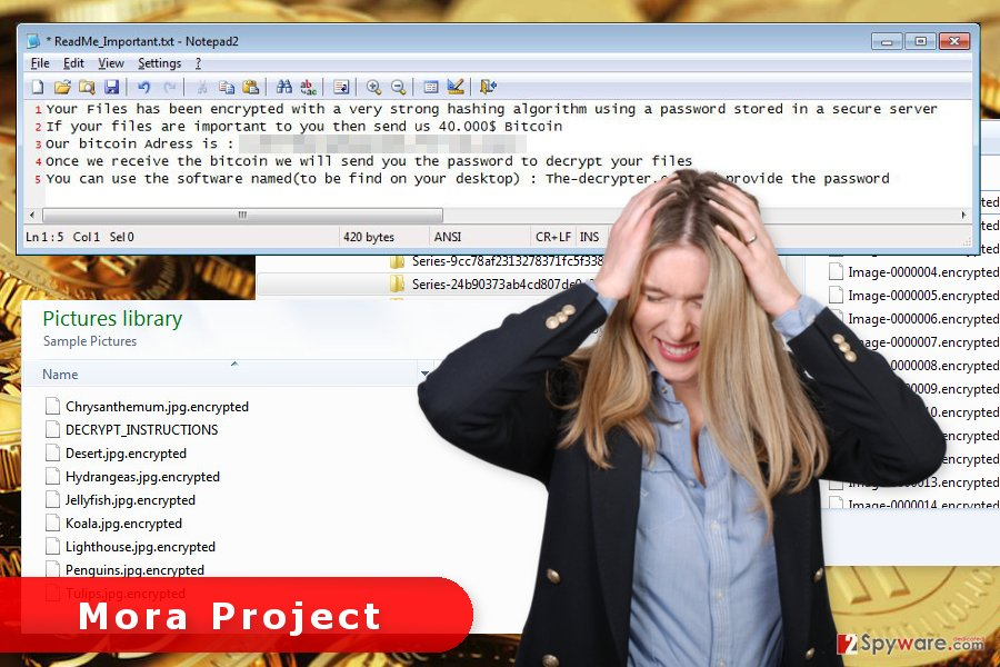 The picture of Mora Project ransomware virus