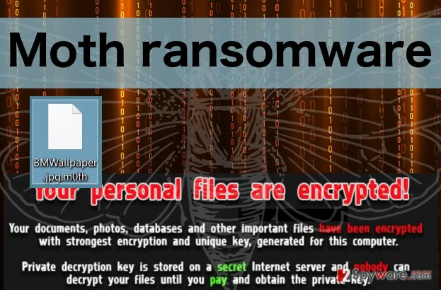 An illustration of Moth ransomware virus