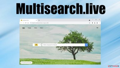 Multisearch.live