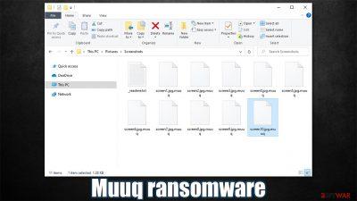 Muuq ransomware