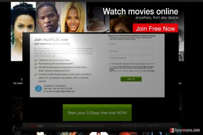 The example of Muvflix domain