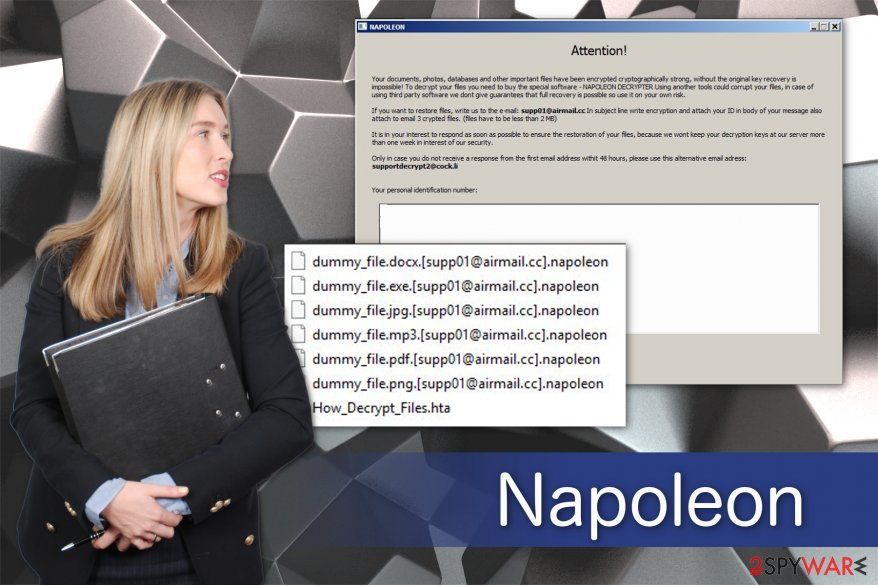 Napoleon ransomware virus illustration