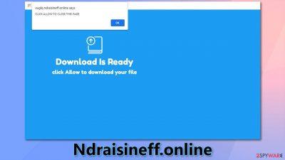 Ndraisineff.online