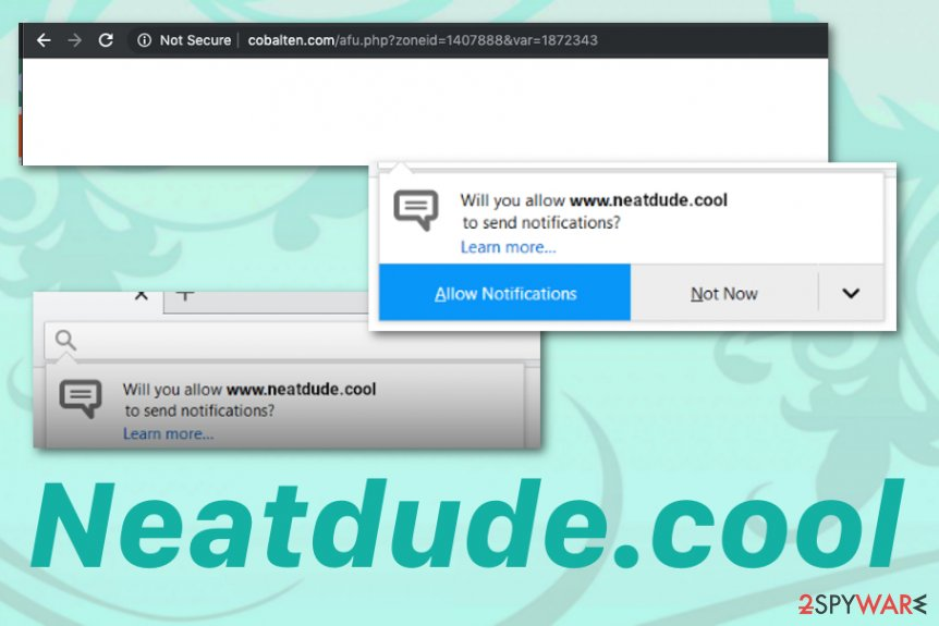Neatdude.cool browser redirect