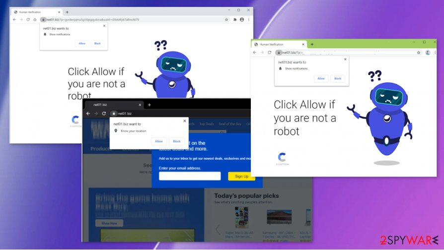 Net01.biz virus