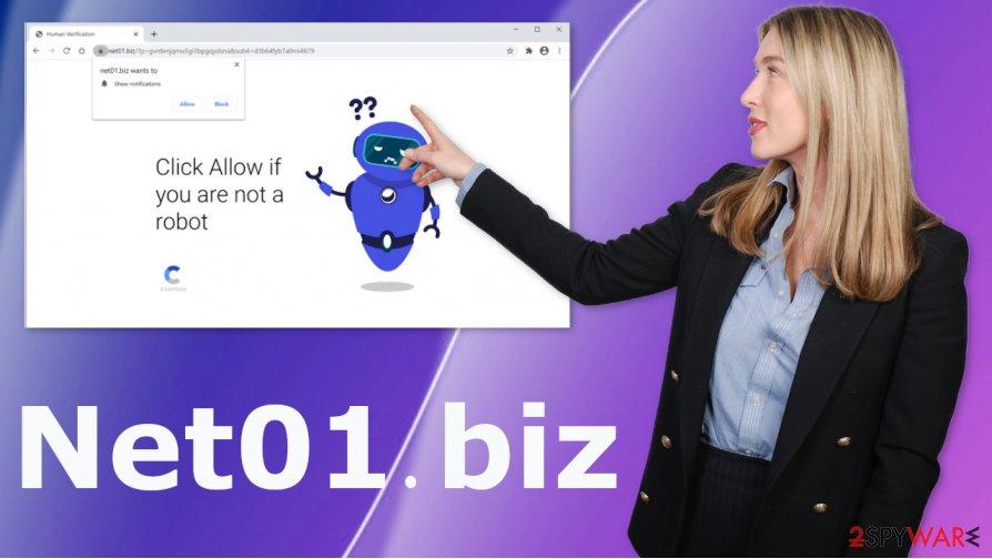 Net01.biz