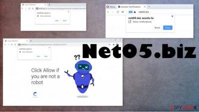 Net05.biz