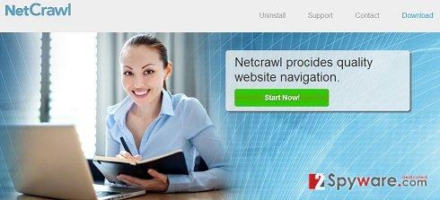 NetCrawl Ads snapshot