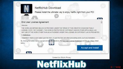 NetflixHub