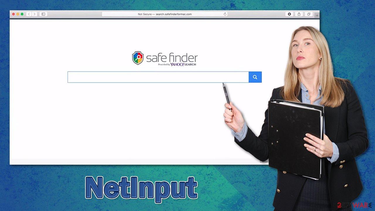 NetInput adware