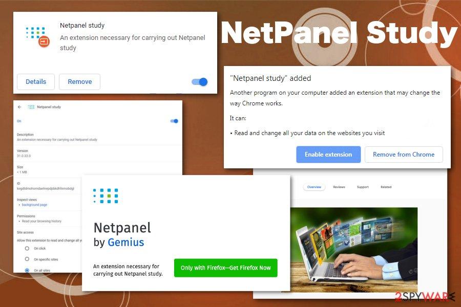 NetPanel Study