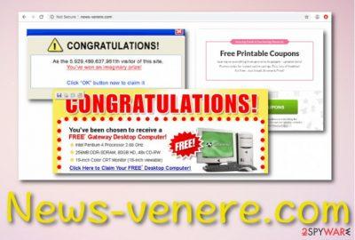 News-venere.com