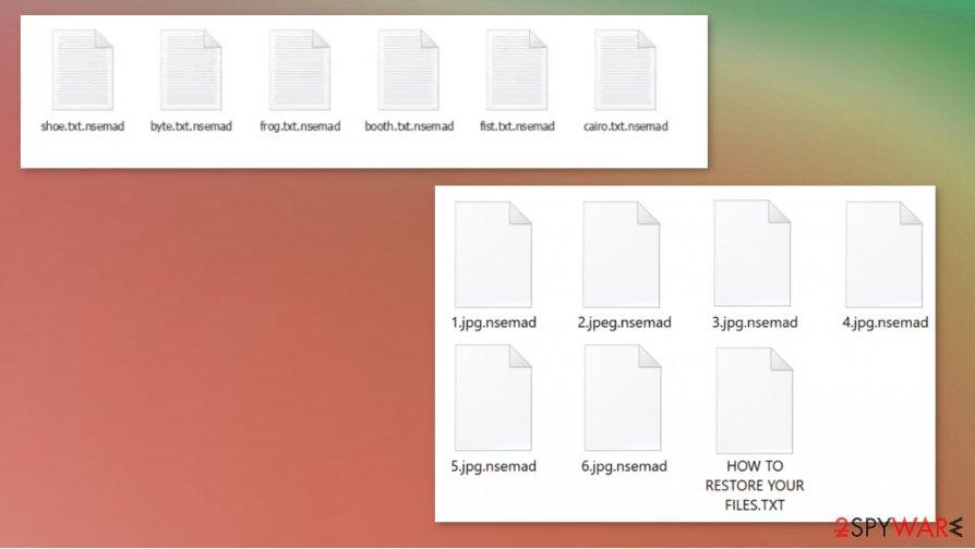 Nsemad ransomware virus