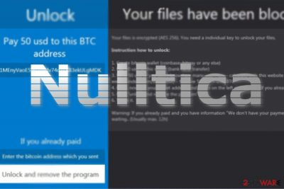 The image of Nulltica GUI