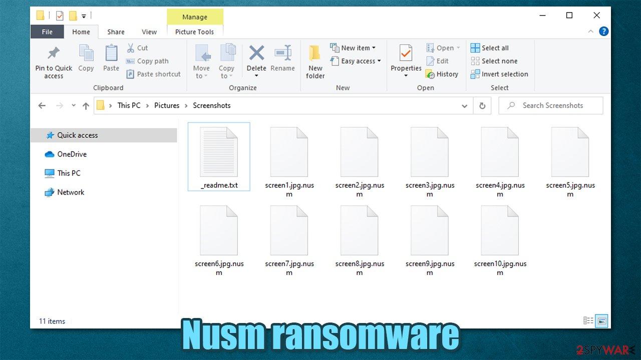 Nusm locked files