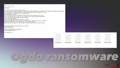 Ogdo ransomware