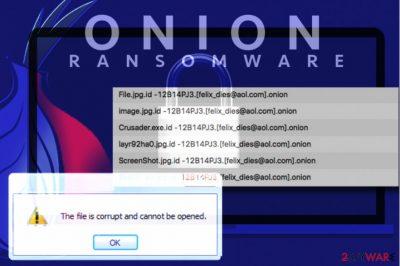 Onion file virus