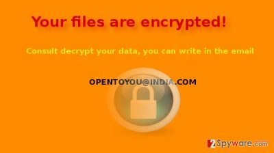 The example of OpenToYou virus