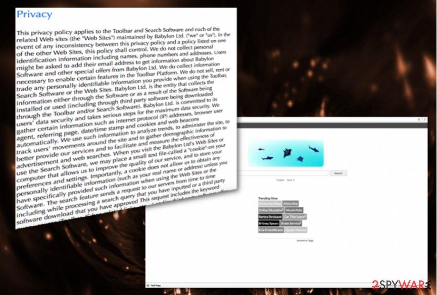 Opti-Page.com virus