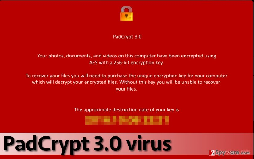 PadCrypt 3.0 virus version