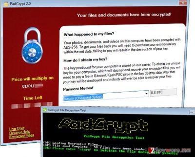 PadCrypt ransomware