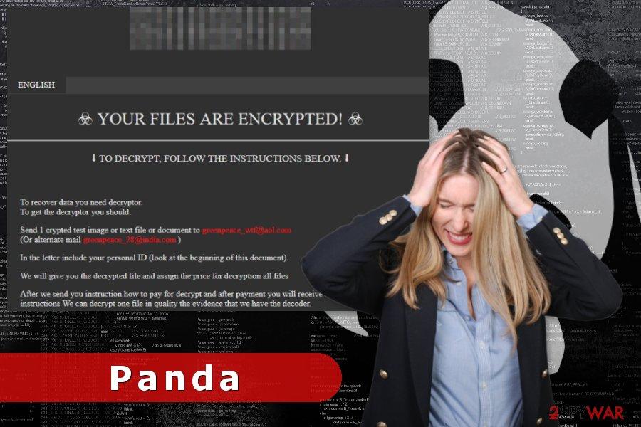Image of Panda ransomware virus