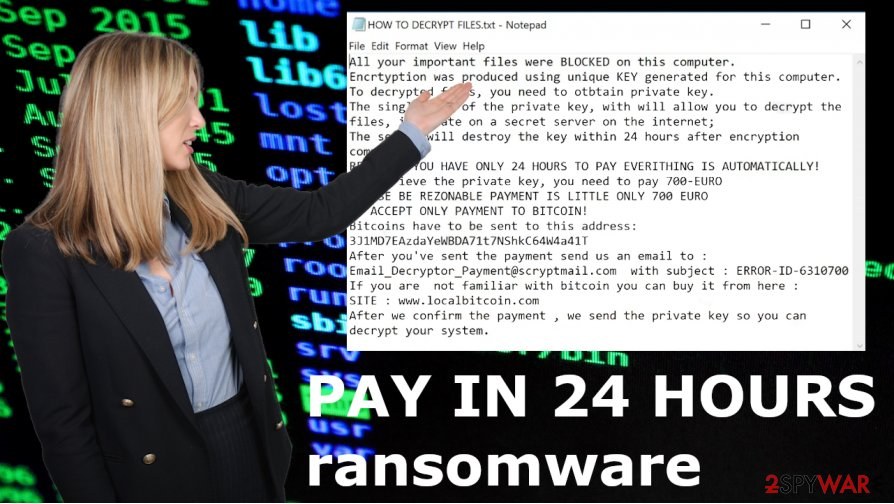 PAY IN 24 HOURS file virus