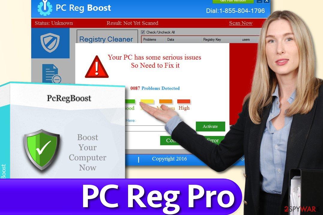 PC Reg Pro