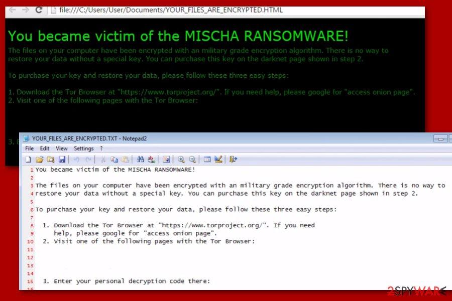 Petya Mischa ransomware