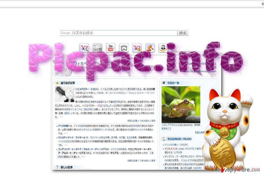 Picpac.info example