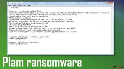 Plam ransomware