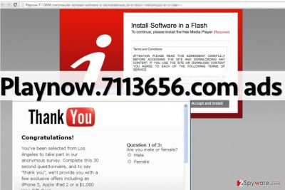 Examples of Playnow.7113656.com ads