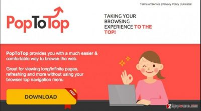 PopToTop ads