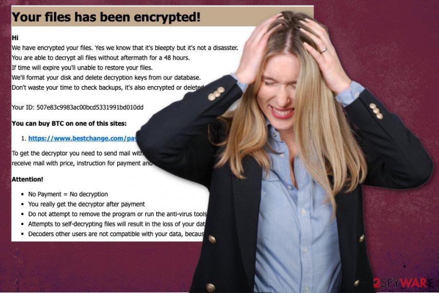 PPDDDP ransomware virus