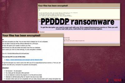PPDDDP ransomware