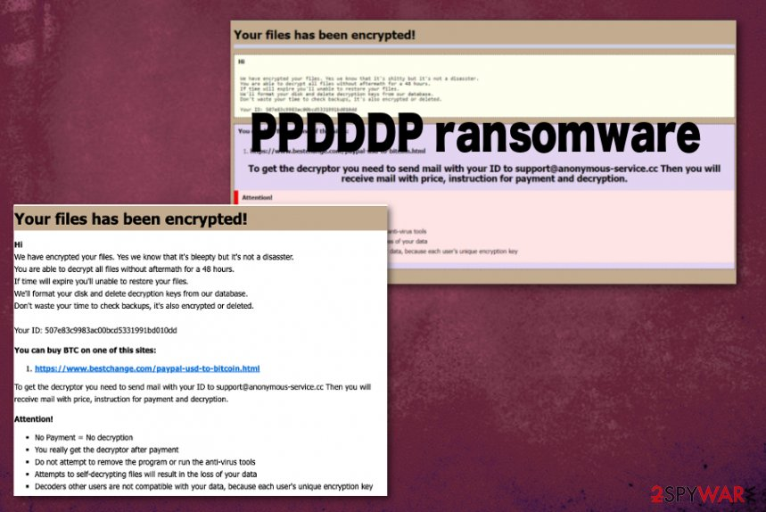 PPDDDP ransomware
