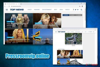 Pressroomvip.online
