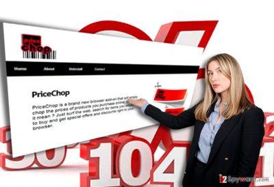 The image illustrating PriceChop