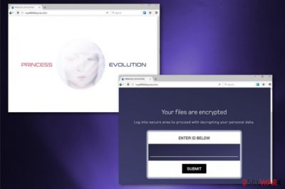 Princess Evolution virus