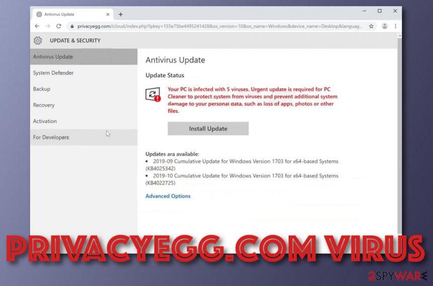 Privacyegg.com scam