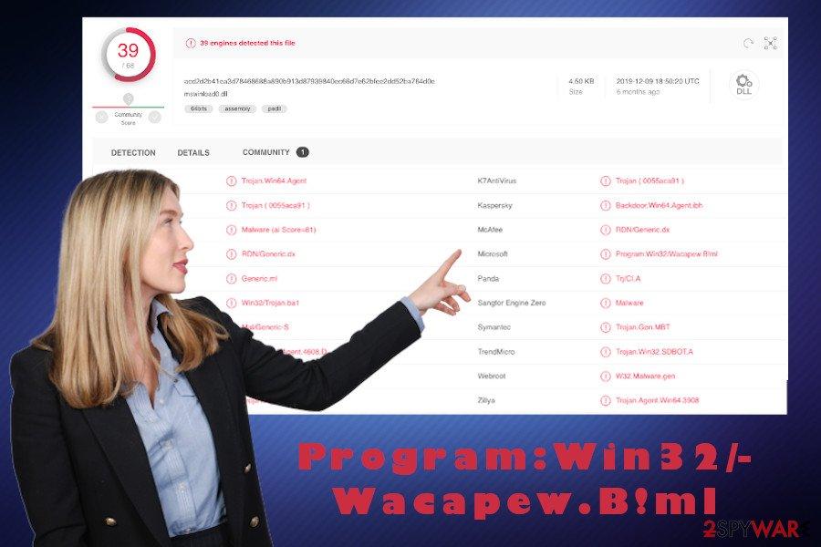 Program:Win32/Wacapew.B!ml virus