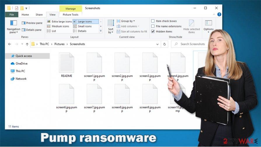 Pump ransomware virus