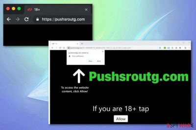 Pushsroutg.com