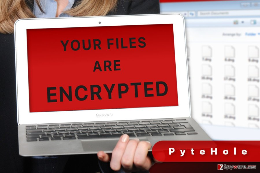 The illustration of PyteHole ransomware