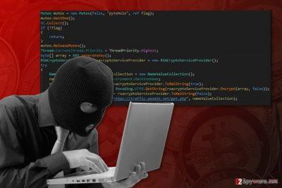 The image of PyteHole ransomware virus