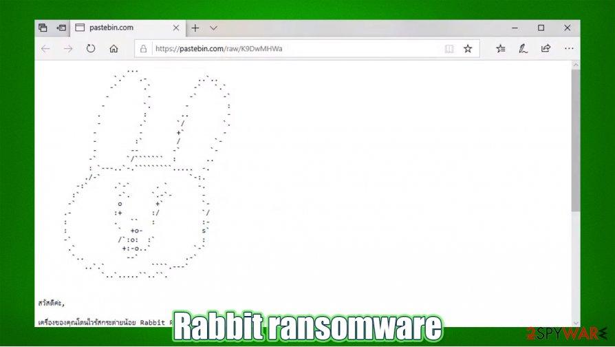 .Rabbit virus