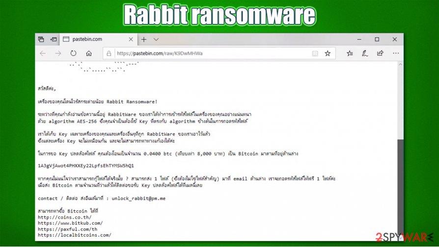 Rabbit ransomware