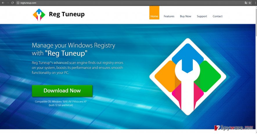 The screenshot of Reg TuneUp official website