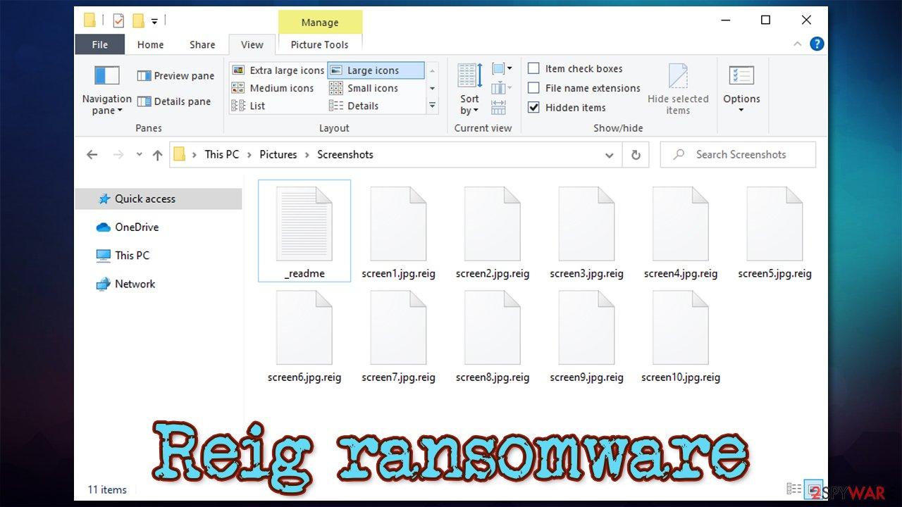 Reig virus encrypted files