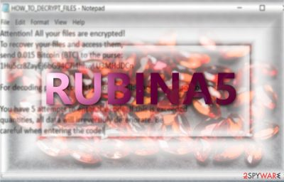 The image displaying Rubina5 ransom note